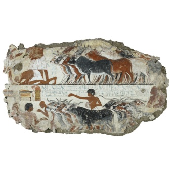 Nebamun's cattle